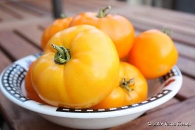 Yellow and Orange tomatoes make orange ketchup.